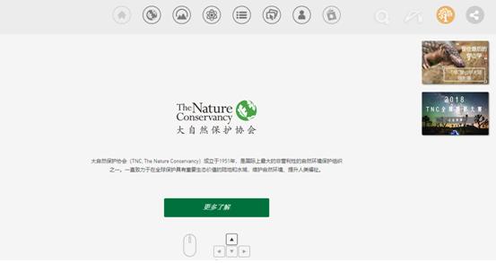 保护协会网站设计