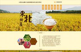 五常市永顺水稻种植农业专业