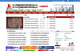 辽宁华阳税务师服务网