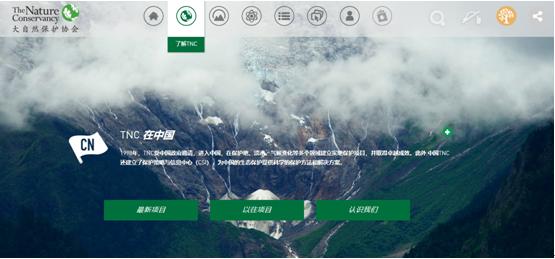 协会网站设计1