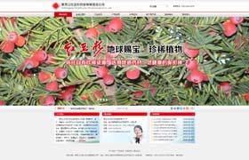 哈尔滨红豆杉科技开发有限责