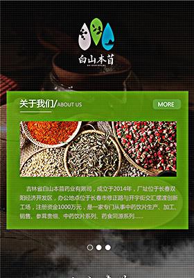 吉林省白山本苜药业有限公司